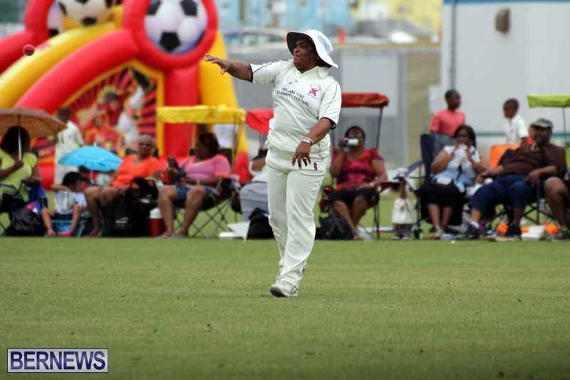 Under-11-Cricket-2015-June-9-10