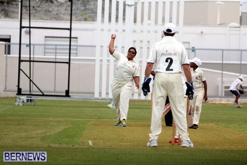 Under-11-Cricket-2015-June-9-11