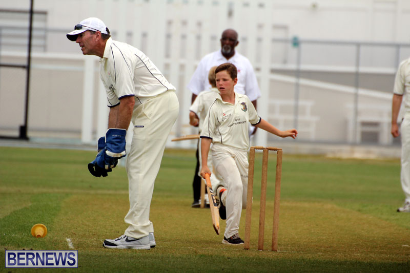 Under-11-Cricket-2015-June-9-13