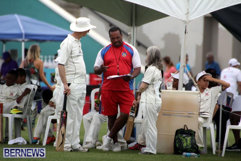 Under-11-Cricket-2015-June-9-14