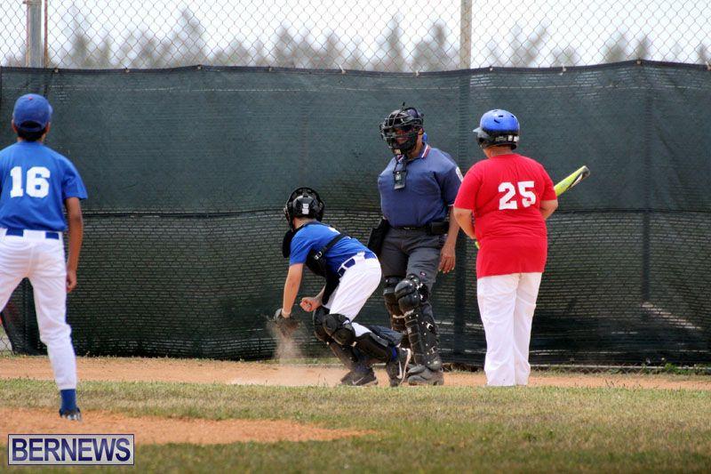 YAO-Cal-Ripken-Baseball-2015June3-14