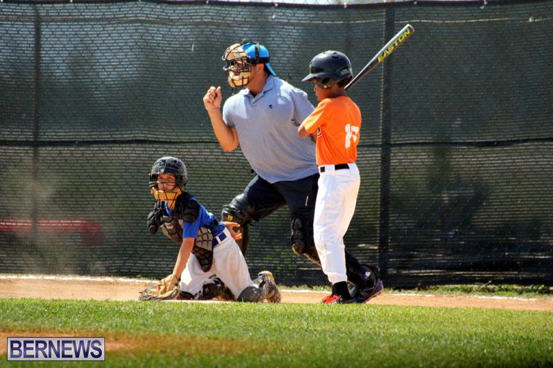 baseball-June-25-2015-10
