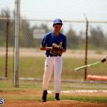 baseball June 25 2015 (11)