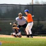 baseball June 25 2015 (15)