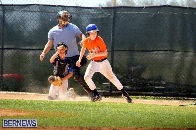 baseball-June-25-2015-18