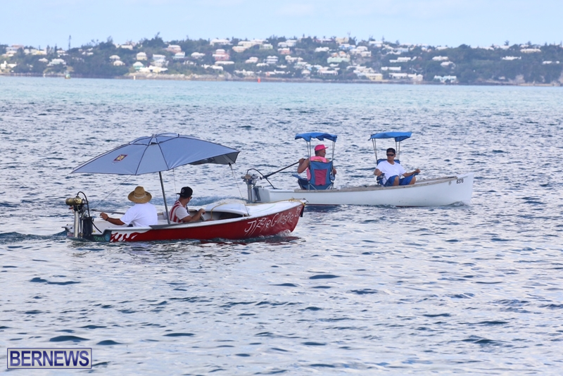 seagull-race-bermuda-june-2015-12