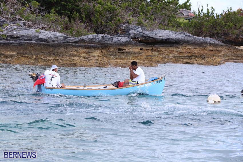 seagull-race-bermuda-june-2015-22