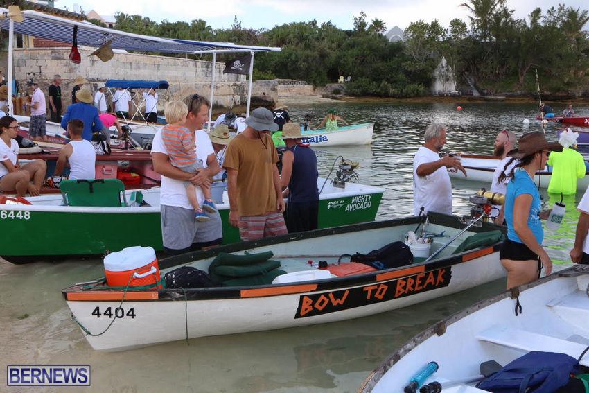 seagull-race-bermuda-june-2015-37
