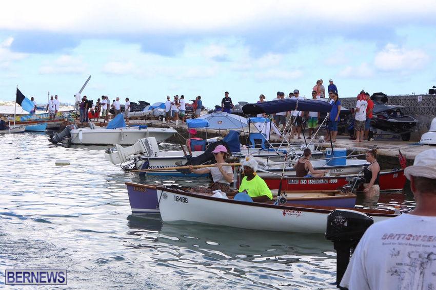 seagull-race-bermuda-june-2015-39