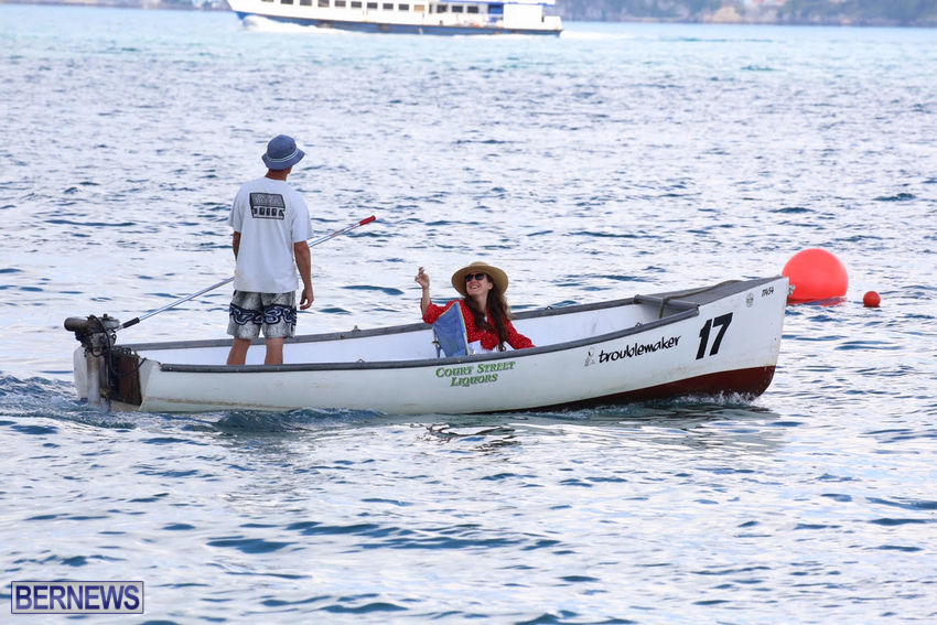 seagull-race-bermuda-june-2015-43