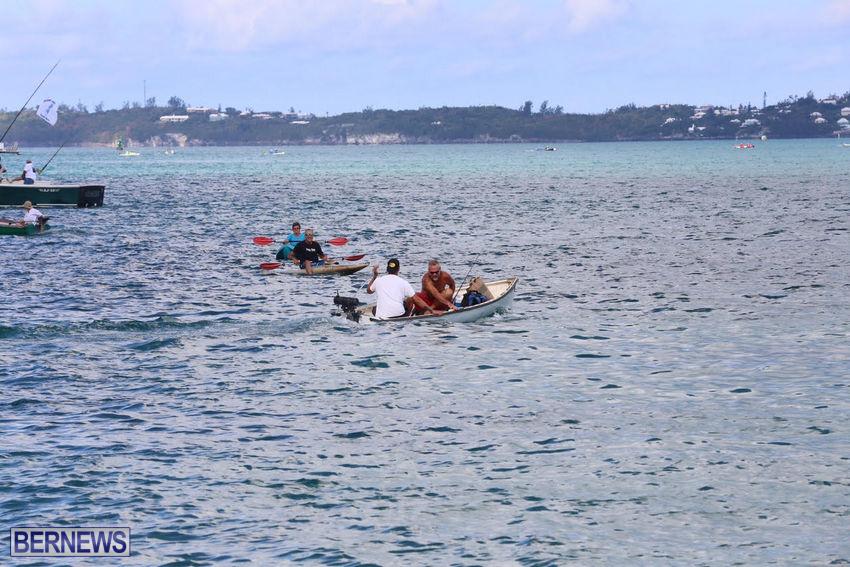 seagull-race-bermuda-june-2015-45