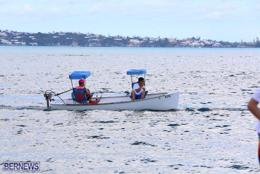 seagull-race-bermuda-june-2015-46
