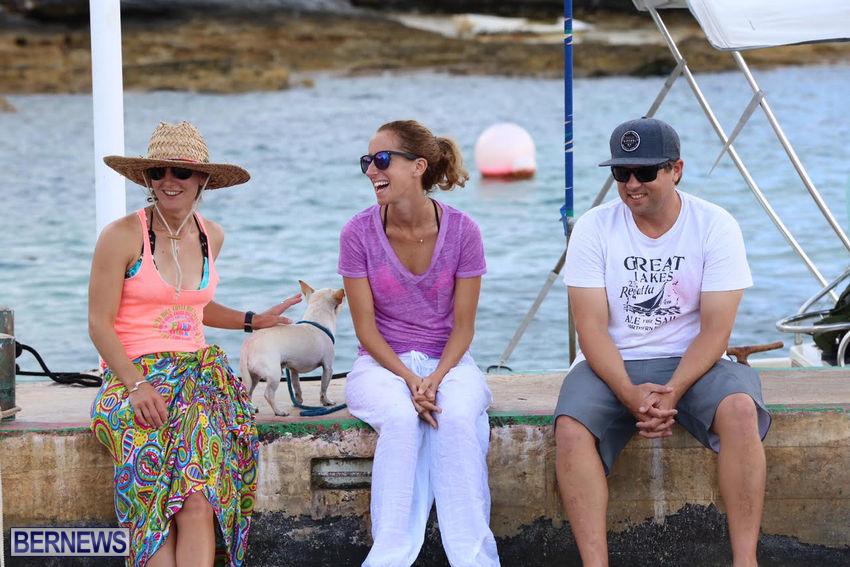 seagull-race-bermuda-june-2015-47