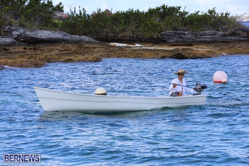 seagull-race-bermuda-june-2015-571