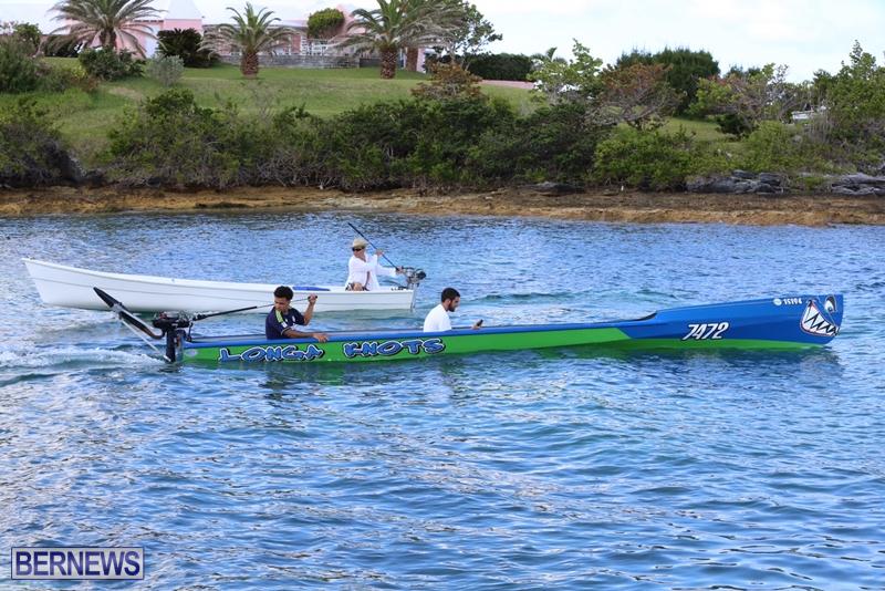 seagull-race-bermuda-june-2015-58