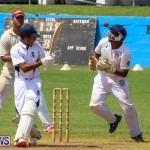 Colts Cup Match Bermuda, July 26 2015-101
