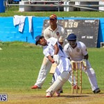 Colts Cup Match Bermuda, July 26 2015-104