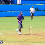 Colts Cup Match Bermuda, July 26 2015-116