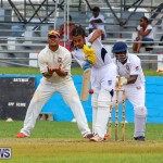Colts Cup Match Bermuda, July 26 2015-36