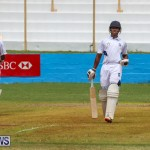 Colts Cup Match Bermuda, July 26 2015-4