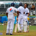 Colts Cup Match Bermuda, July 26 2015-46