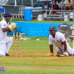 Colts Cup Match Bermuda, July 26 2015-47