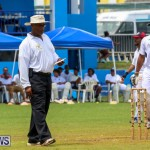 Colts Cup Match Bermuda, July 26 2015-58