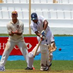 Colts Cup Match Bermuda, July 26 2015-66