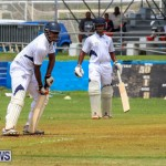 Colts Cup Match Bermuda, July 26 2015-7