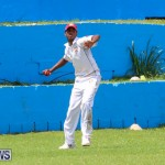 Colts Cup Match Bermuda, July 26 2015-81