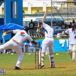 Colts Cup Match Bermuda, July 26 2015-82