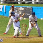 Colts Cup Match Bermuda, July 26 2015-99