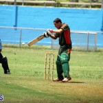 Cricket Premier & First Division July 1 2015 (11)