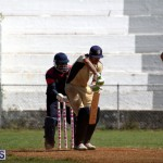 Cricket Premier & First Division July 1 2015 (4)