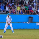 Cup Match Day 2 Bermuda, July 31 2015-122