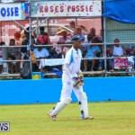 Cup Match Day 2 Bermuda, July 31 2015-129