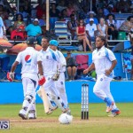 Cup Match Day 2 Bermuda, July 31 2015-137