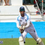 Cup Match Day 2 Bermuda, July 31 2015-162