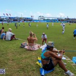 Cup Match Day 2 Bermuda, July 31 2015-20