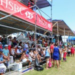 Cup Match Day 2 Bermuda, July 31 2015-28