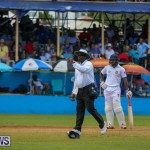 Cup Match Day 2 Bermuda, July 31 2015-77