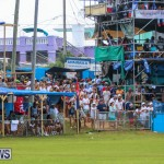Cup Match Day 2 Bermuda, July 31 2015-82
