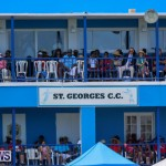 Cup Match Day 2 Bermuda, July 31 2015-91