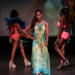 Evolution Retail Show City Fashion Festival Bermuda, July 11 2015-51