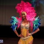 Evolution Retail Show City Fashion Festival Bermuda, July 11 2015-56