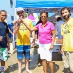 Groundswell Lionfish Tournament Bermuda, July 18 2015-19