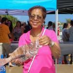 Groundswell Lionfish Tournament Bermuda, July 18 2015-20