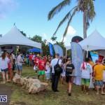 Groundswell Lionfish Tournament Bermuda, July 18 2015-3