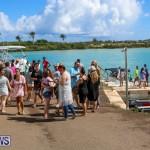 Groundswell Lionfish Tournament Bermuda, July 18 2015-31