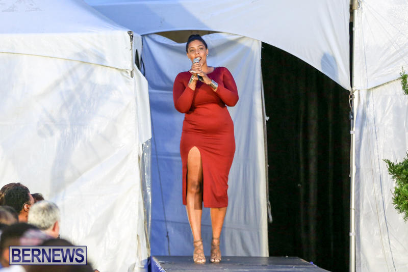 International-Designer-Show-City-Fashion-Festival-Bermuda-July-9-2015-145